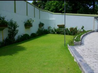 Landscaping and garden service