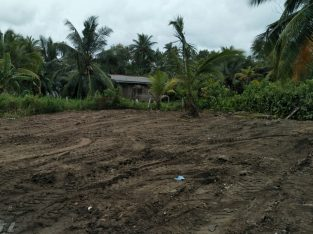 Land for Immediate Sale in Panadura.