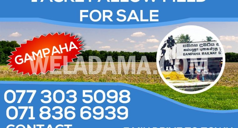 1 Acre Land for Sale in Gampaha City