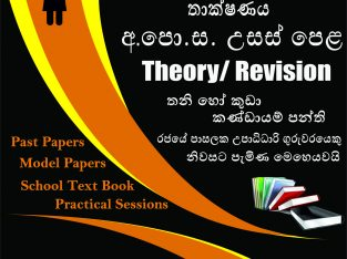 ICT Class G.C.E. Advanced Level – Theory/ Revision