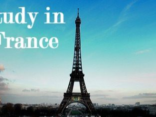 Study and settle in France