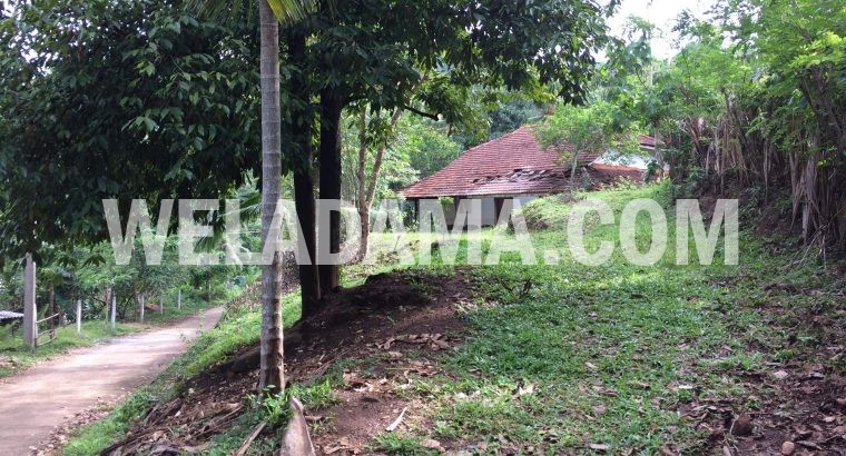 Suitable land for sale in Matale oyapahala