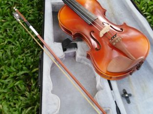 Mozart 10 year old violin(korea imported)