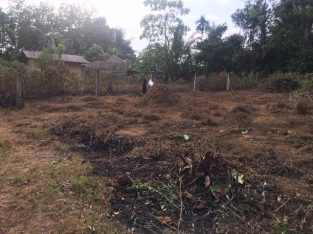 Land for sale in Millawa