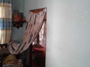 House with 4 Bed Room, Annex