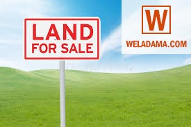 Land for Sale at Wennapuwa