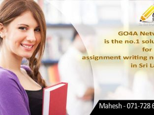 Go4A Network Assignment Writing Service