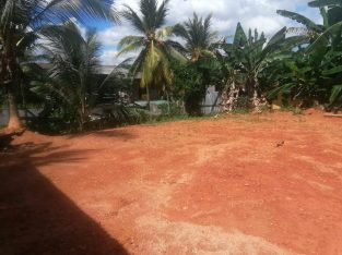 20 perches land for sale in kottawa