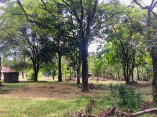 UDAWALAWA LAND FOR SALE