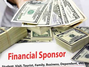 Financial sponsor support for all countries…