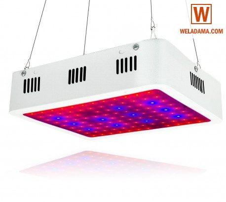 LED Plant (Grow) light 300W