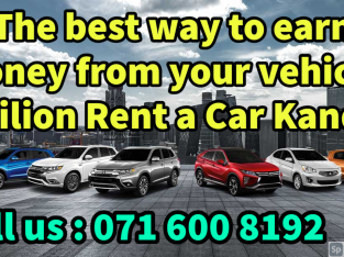 Earn from your own vehicle – Srilion