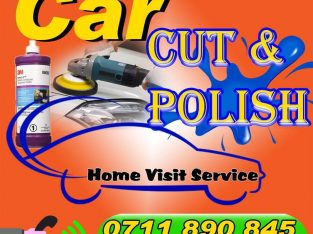car cut and polish (home visit service)