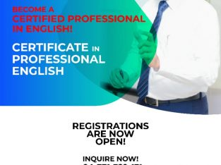 Certificate in Professional English