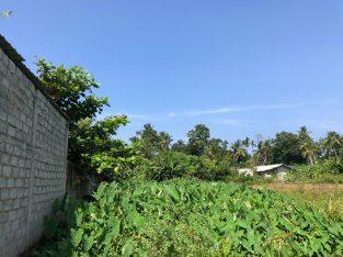 Land for Sale in Katuwangoda