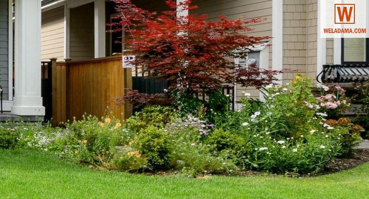Home Gardening Services