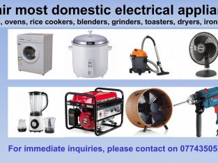 Repair domestic electrical appliances