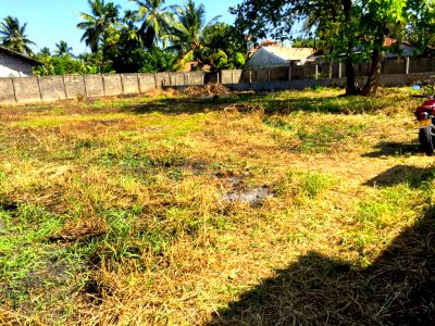 14 Perches Residential Land for Sale in Negombo