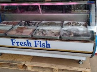 fresh chicken display freezer