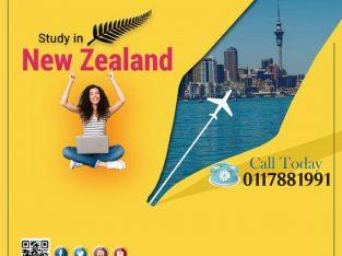 Study & Settle in New Zealand