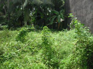 Bare land for sell in Mahiyangana