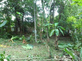 Land for Sale – Gampaha, Hansagiri Road